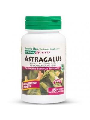 Astragalus 500 mg. 60 capsules